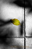 8-31-2009...  Good By August.